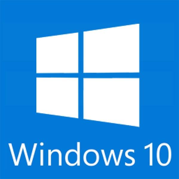 Windows 10 Professional (ESD, OEM)