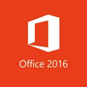 Microsoft Office 2013/2016 Professional (ESD)
